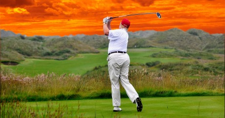 Trump's Ass NYMAG